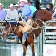 The Dinosaur Roundup Rodeo is proud to have the best livestock in the world from Powder River Rodeo and D & H Cattle. Powder River Rodeo and D & H […]