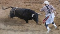 Bullfighters Only (BFO) was created to promote growth, popularity, and acceptance of freestyle bullfighting worldwide. Since its inception, BFO has evolved into a platform that serves to excite the western […]
