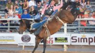 Full results available at prorodeo.com  Dinosaur Roundup Rodeo Vernal, Utah, July 6-8 All-around cowboy: Cody Doescher, $313, steer wrestling and team roping. Bareback riding: 1. Orin Larsen, 83 points on […]