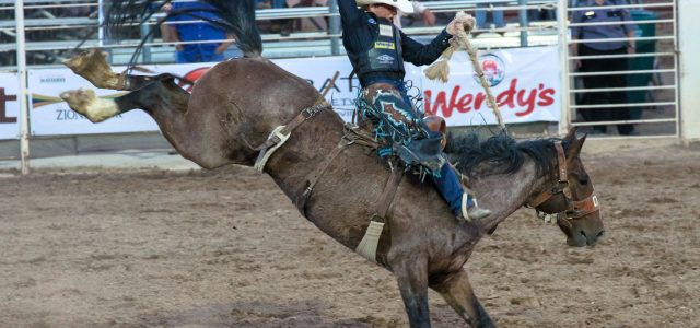 – 2018 Dinosaur Roundup Rodeo – July 12, 13, & 14 at 7:30 PM Nightly – Western Park Arena in Vernal, Utah –   For Sponsorship Opportunities, please contact us […]