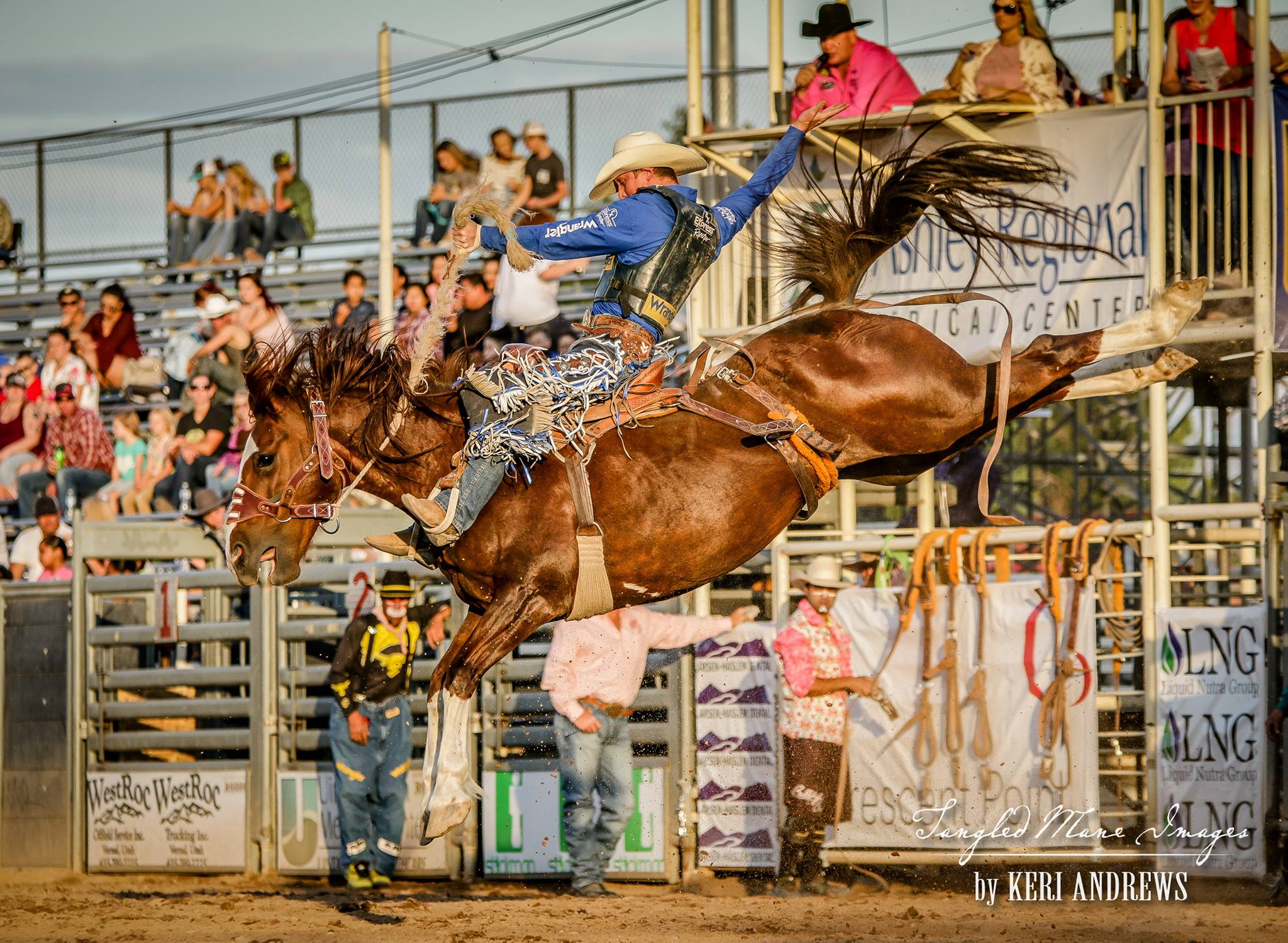 2018 Rodeo Results Dinosaur Roundup Rodeo