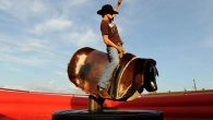 Check out Vernal Holly Days Festival on November 23 from Noon to 8 pm! The Dinosaur Roundup Rodeo is sponsoring the mechanical bull riding, and will have two mechanical bulls […]